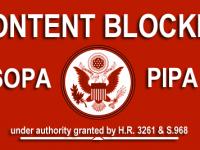 Ce sunt SOPA si PIPA. Scurt documentar VIDEO