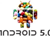 Noul Android 5.0  Jelly Bean  ar putea fi lansat in iunie