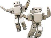 iLikeIT: Robotul romanesc cu care s-a jucat toata redactia PRO TV