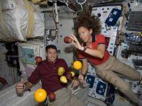 Experiment reusit. Astronautii isi vor putea cultiva singuri legume pe bazele extraterestre