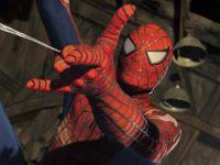 Tehnologia  lui Spiderman ar putea exista. Fizicienii au testat forta panzei unui paianjen din Madagascar, o panza mai puternica decat kevlarul