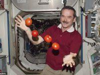 Astronautul Chris Hadfield,  lasat cu gura cascata in imponderabilitate  de mesajul de sustinere trimis de Regina Marii Britanii