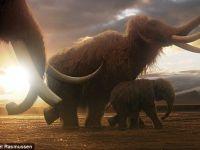 Oamenii de stiinta planuiesc invierea a 24 de animale disparute. Dinozaurii nu se afla printre acestea