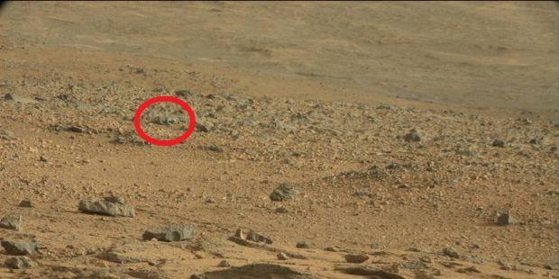 O creatura dubioasa, surprinsa pe Marte de robotul Curiosity al NASA?