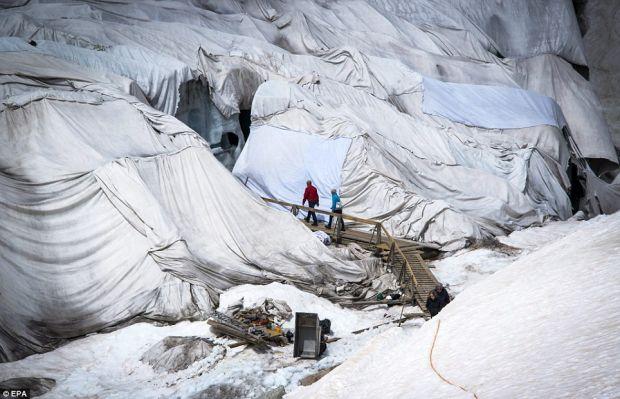 Patura  - protectia cea mai potrivita pentru ghetarii din Alpi