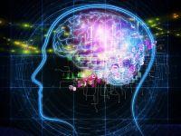 Ce se intampla cu creierul pasionatilor de gadgeturi. Raspunsul dat de Societatea de Neurologie din Romania