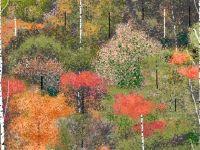 Un artist face tablori geniale cu Paint. GALERIE FOTO superba