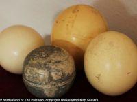 Cea mai veche reprezentare a globului pamantesc a fost facuta pe un... ou de strut