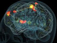 Adevaratul efect al somnului pentru creier. Descoperirea oamenilor de stiinta