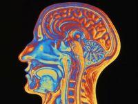 Creierul este mai rapid decat credem: vedem o imagine in doar 13 milisecunde