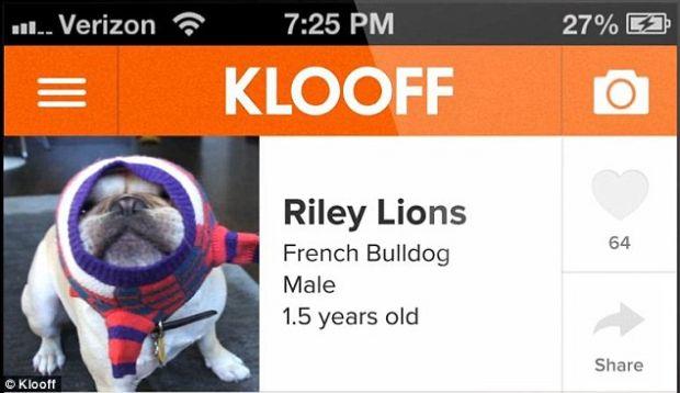 Klooff, reteaua de socializare pentru animale