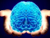 S-a gasit zona din creier responsabila pentru deciziile mai putin inspirate