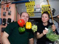 Ziua Recoltei in spatiu. Primele legume si fructe crescute pe Statia Spatiala Internationala