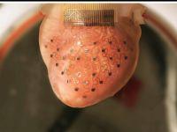 Inima poate fi ajutata de o imprimata 3D VIDEO