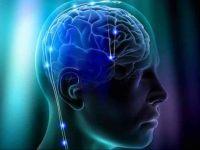 Creierul reactioneaza la fel cand vine vorba de matematica sau arta, spun cercetatorii