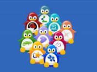 Linux.com: Romanca Teodora Baluta a gasit o metoda noua pentru curatarea Linuxului de erori