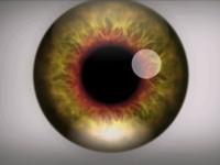 Videoclipul care iti va crea halucinatii timp de cateva secunde. Ce se intampla daca citesti fiecare litera