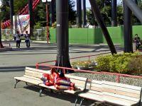 20+ imagini surprinzatoare Google Street View. Masina e acum in Romania