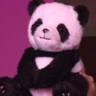 Google Panda - in Japonia, Google a prezentat un produs genial, poti sa-l intrebi orice! Vei vrea sa-l imbratisezi .