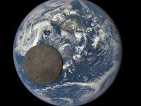 Un asteroid de 3.2km diametru a trecut pe langa Terra! Ce spun cercetatorii