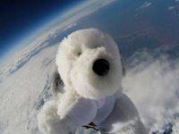 Niste copii au trimis un catel de plus in stratosfera! Ce s-a intamplat cu jucaria dupa