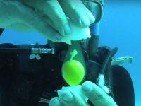 VIDEO incredibil: ce se intampla daca spargi un ou sub apa?