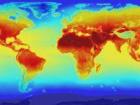 Declaratiile cercetatorilor privind incalzirea globala:  Putem spune game over!
