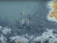 Misterul lacului de sub ocean: fiintele care inoata aici mor imediat! Care este explicatia