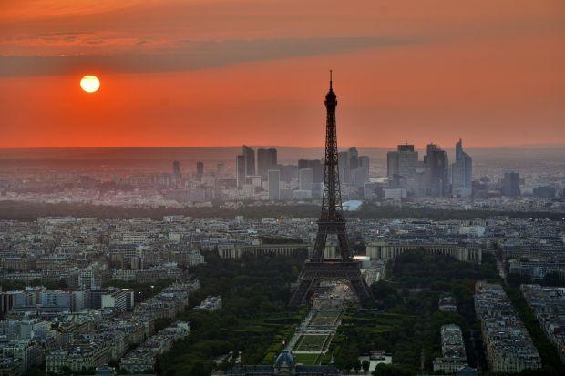 Cati europeni vor muri anual din cauza caniculei? Incalzirea globala va face numeroase victime