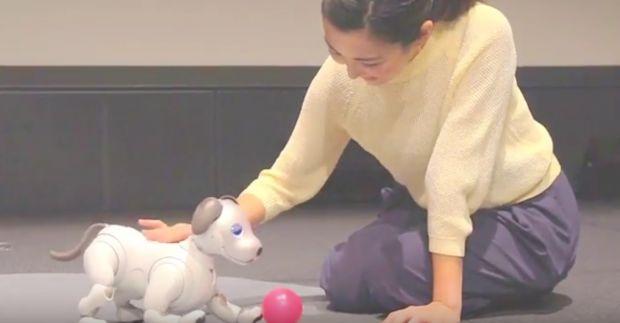 Noua versiune a cainelui-robot Aibo! Se misca natural si stabileste o legatura emotionala cu stapanul
