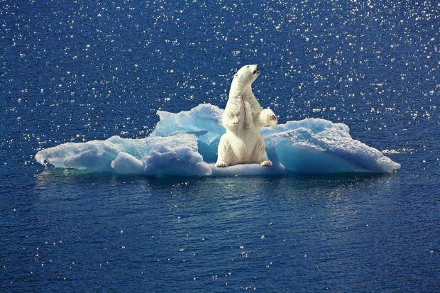 Romania sustine infiintarea Observatorului Spatial al Climei. Noul proiect va oferi informatii despre modificarile climatice