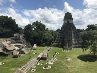 Piramide ascunse in jungla din Guatemala descoperite cu ajutorul tehnologiei de ultima ora