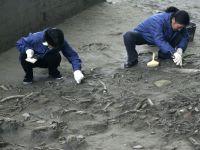 Obiceiul inexplicabil practicat acum 4.500 de ani. Ce au descoperit arheologii in acest mormant
