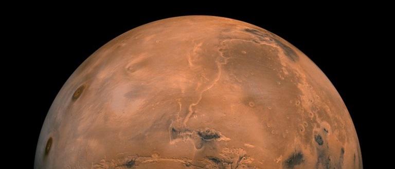Experiment extraordinar: ce s-a întâmplat cu legumele plantate de oamenii de știință în solul de pe Marte
