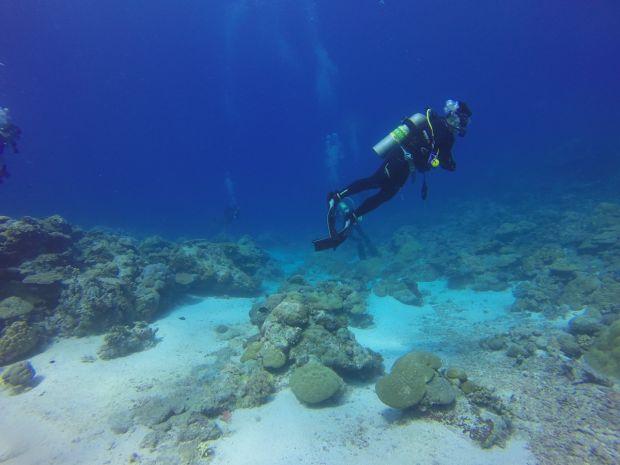 Descoperire surprinzătoare în Groapa Marianelor. Ce ascunde cel mai adânc loc de pe planetă VIDEO