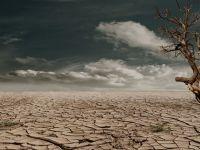 Efectele schimbărilor climatice. Omenirea riscă o criză alimentară fără precedent