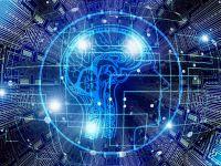 Puterea creierului uman. În câte dimensiuni suntem capabili să gândim