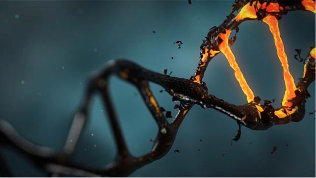 Noua metodă cu ajutorul căreia omenirea ar putea elimina definitiv bolile ereditare