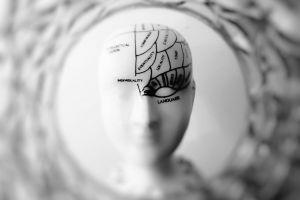 Cât de departe poți merge, în numele științei? Creierele umane dezvoltate în laborator, la limita dintre inovație și controversă