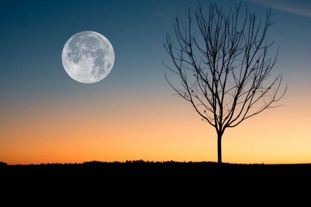 Fenomen astronomic deosebit în noaptea de marți spre miercuri