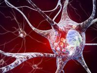 Avans incredibil în tratarea uneia bolile incurabile care macină omenirea. Reușita cercetătorilor a determinat regresul maladiei