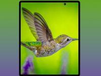 Imaginile cu viitorul telefon pliabil Galaxy Fold 2 divizează Internetul. Ție îți place cum arată?