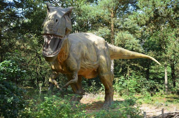 Cum era să trăiești pe vremea dinozaurilor? Google îi aduce chiar la tine în casă, datorită unei noi funcții