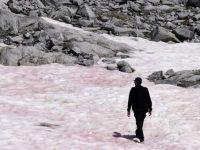 Misterioasa apariție a gheții roz în Alpii Italieni. Semnalul de alarmă lansat de cercetători