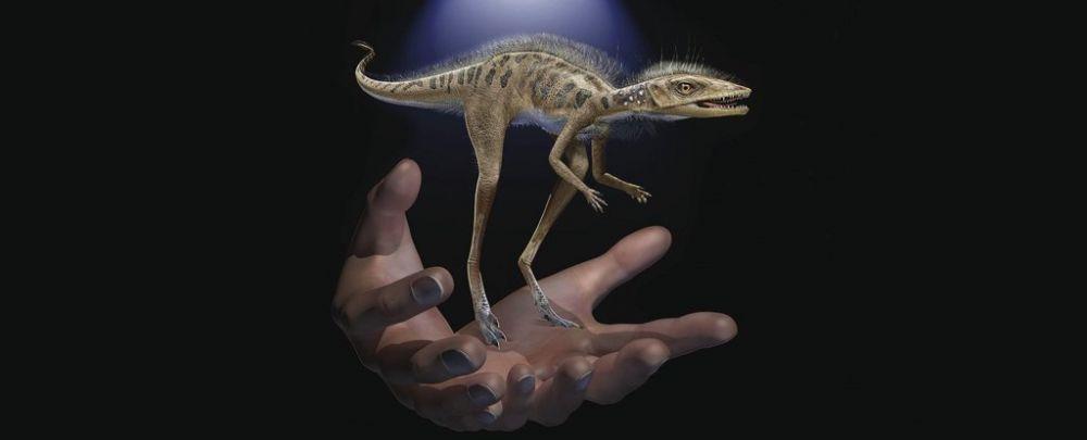Cea mai neașteptată descoperire. Ce au aflat cercetătorii despre strămoșii dinozaurilor