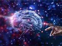Descoperire remarcabilă a oamenilor de știință: ar putea ajuta în lupta cu stresul, insomniile și slăbirea sistemului imunitar