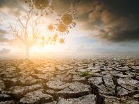 Încălzirea globală e mai periculoasă decât am fi crezut: face virusurile mai greu de ucis