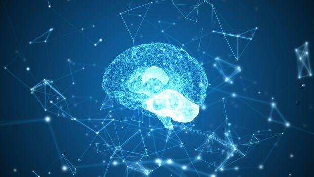 Hormonul foamei are impact asupra memoriei. Cât de strânsă este conexiunea dintre intestin și creier