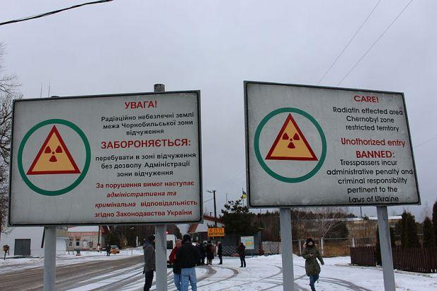 Cele mai rezistente ființe de pe Pământ pot supraviețui chiar și radiațiilor mortale de la Cernobîl