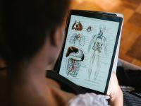 Cercetătorii au descoperit un nou organ în corpul uman! Ce rol are și unde este localizat
